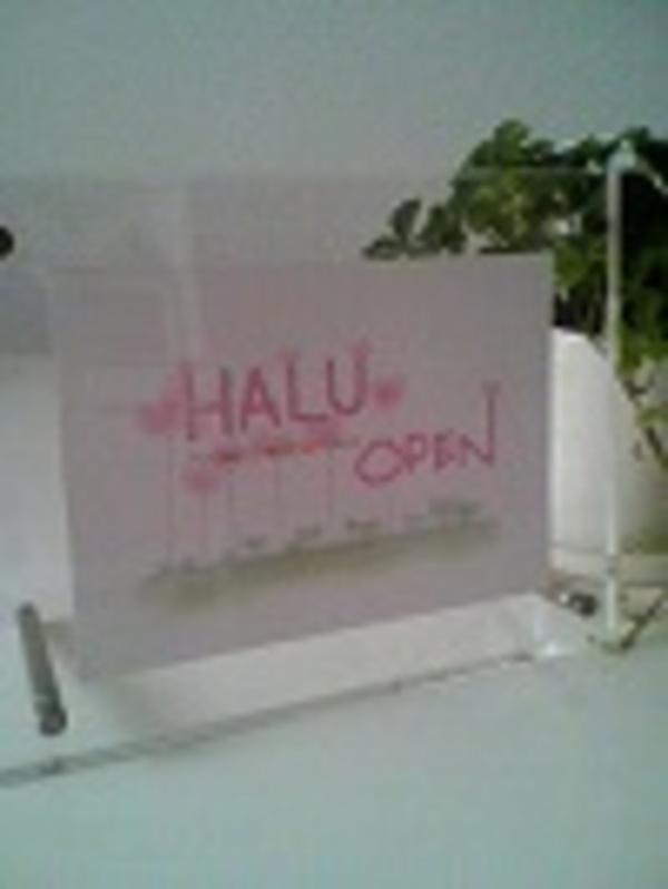 12月はHALUの誕生月です(*^^*)